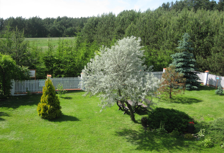 Ogród, Plac zabaw, Basen